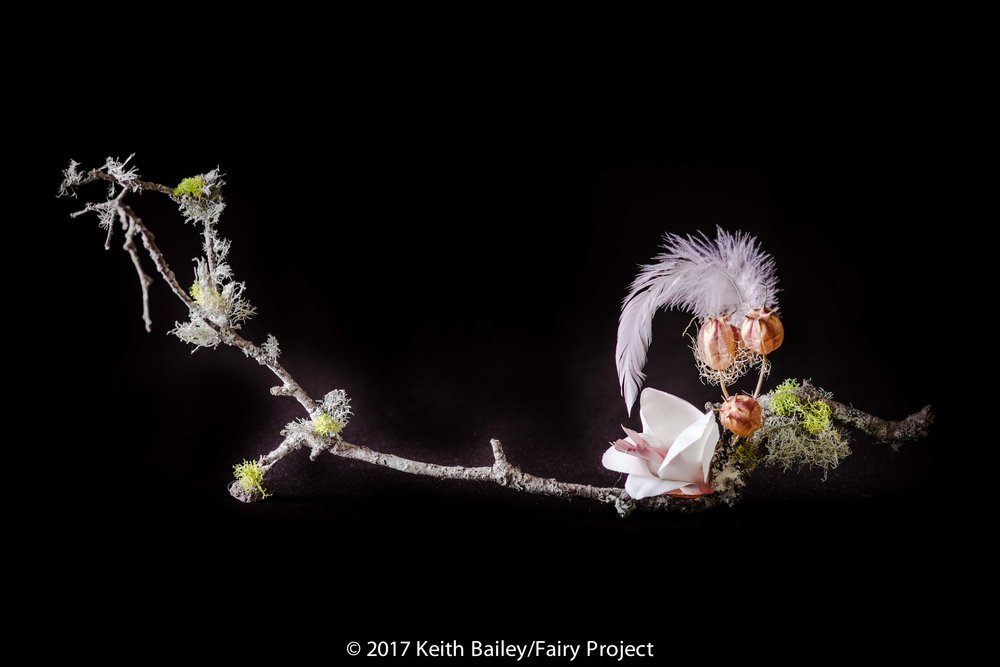 The Fairy Project - Magnolia Fairy
