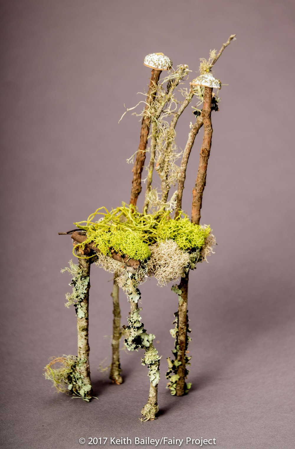 The Fairy Project - Angelo's Fairy King Chair