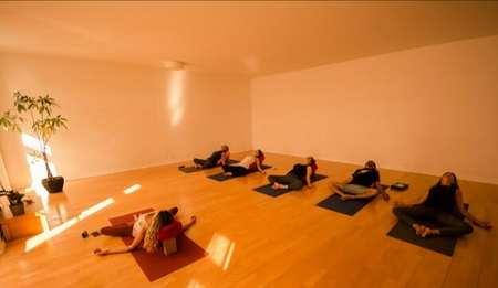 Aravinda Yoga Shala photos