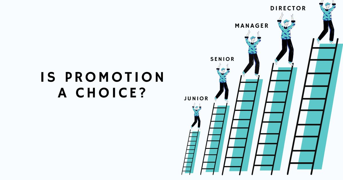 /a-guide-to-career-promotions-and-the-peter-principle-k6373tn0 feature image