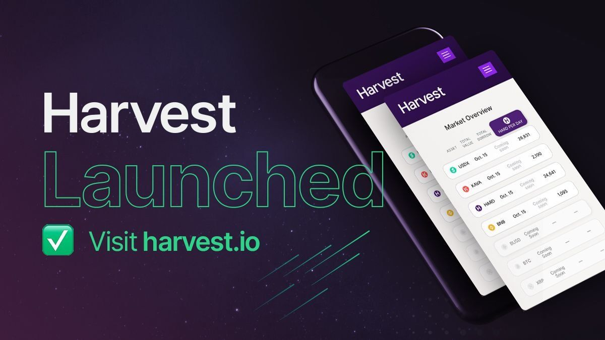 /kava-launches-harvestio-worlds-first-cross-chain-money-market-zp1q3w7n feature image