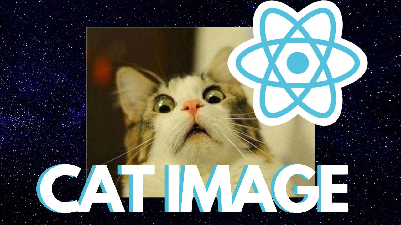 /cats-taking-over-how-to-make-a-random-cat-image-generator-with-react-and-cat-api-ke3s3wrg feature image
