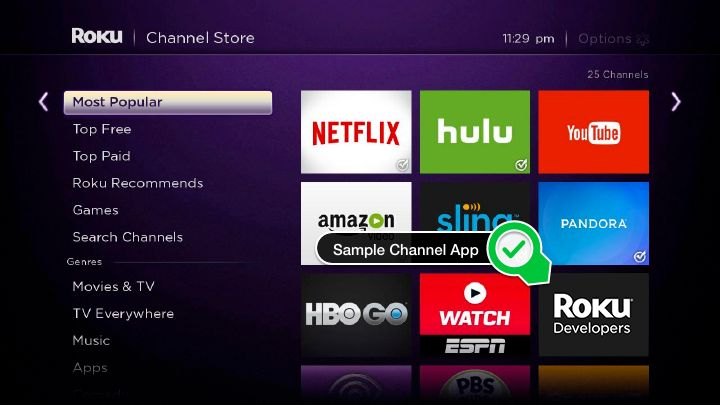 /building-a-roku-channel-from-scratch-j51r3uj2 feature image