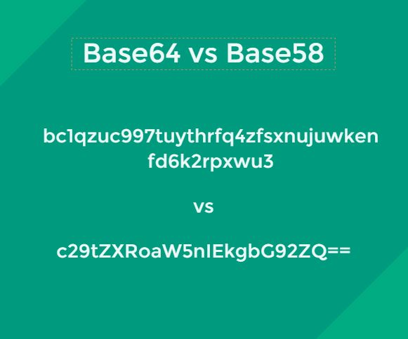 /learn-more-about-data-encoding-base64-vs-base58-9q263ehf feature image