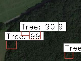 /how-to-identify-trees-with-deep-learning-b4293uce feature image