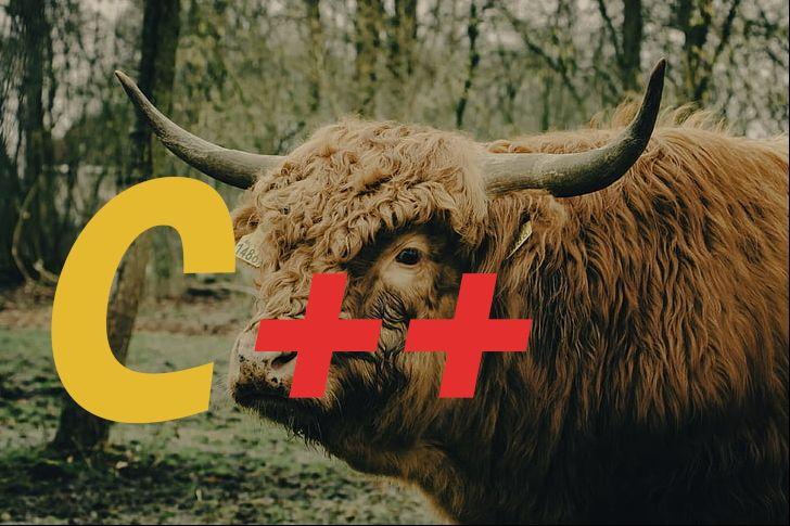 /increment-and-decrement-operators-in-cc-6c1c3u63 feature image