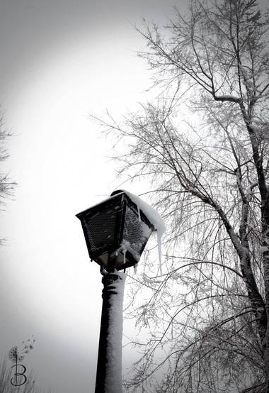 Conbyconv en Hamelin: Paisaje  (Fuenlabrada), #paisaje20  #invierno20