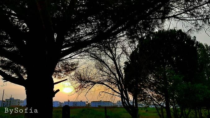 Marisofigonzalez en Hamelin: Paisaje, #sunset