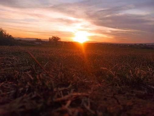diegogordorivero en Hamelin: Paisaje  (Moraleja), Extremadura