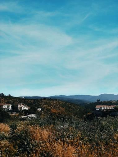 Fernanda González  en Hamelin: Paisaje  (Quilpué), Cerro🌲 Octubre 2020 #paisaje #chile #fernnxnda #verde #cielo #mountain #cerro #naturaleza #photooftheda...