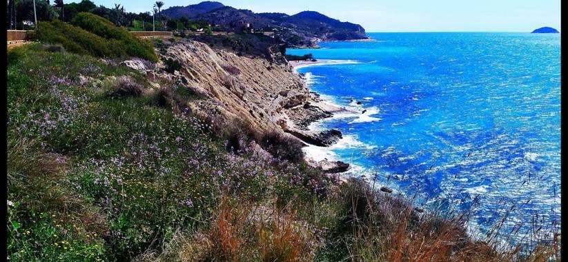 Mcjarama en Hamelin: Paisaje  (Villajoyosa), #flora21  #paisaje#mar#montaña