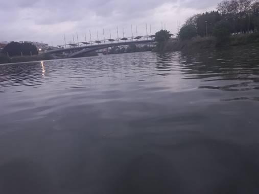 Enrique71as en Hamelin: Paisaje, Agua del Guadalquivir