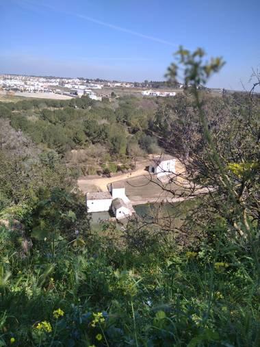 Msdh1981 en Hamelin: Paisaje  (Alcalá de Guadaíra), Parque Oromana. Molino de Benarosa.  Alcalá de Guadaíra