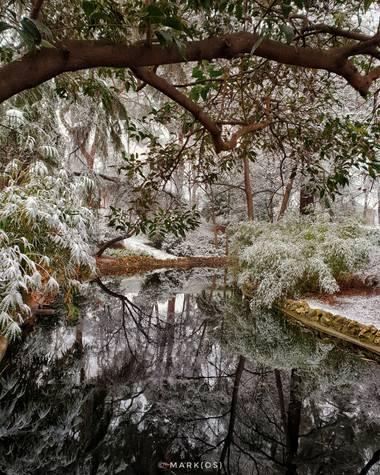 MARK(OS) - Mis fotos de Madrid en Hamelin: Paisaje  (Madrid), The Warmest Coldness. (II)  #invierno20 #invierno #winter #frio #coldness #nieve #snow #parqu...
