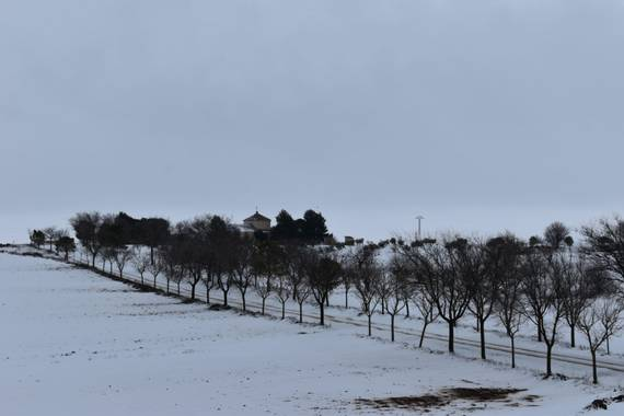 Ismarule3 en Hamelin: Paisaje, #invierno20 #filomena #nieve #enero2021