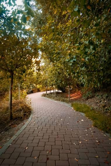 Iman.akhrouf en Hamelin: Paisaje  (Málaga), #jardinbotanico #malagaphotography #fotografiadenatureza  #flora