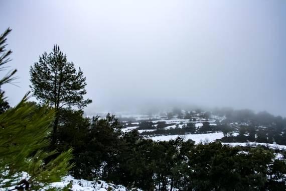 Yai_22 en Hamelin: Paisaje  (Torremanzanas), #invierno20