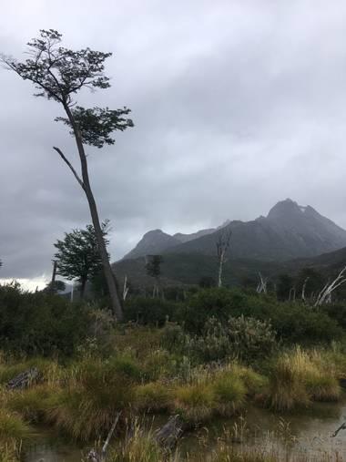 misteraugusto66 en Hamelin: Paisaje  (Ushuaia), Ushuaia