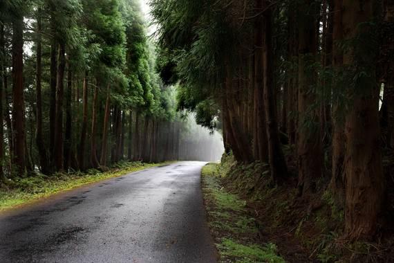 Raquel Galo en Hamelin: Paisaje  (Ponta Delgada), La isla más grande de las Azores, São Miguel. Pasear por cualquiera de sus rincones te transporta por cam...