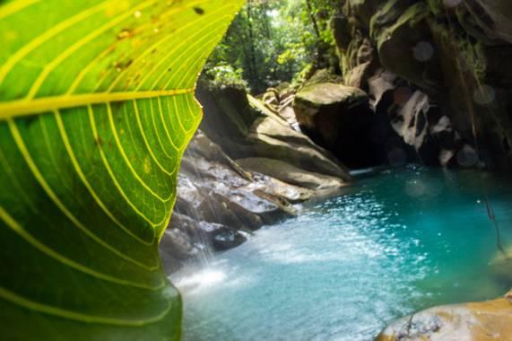 Camiloacca90 en Hamelin: Paisaje  (Sabanalarga), #agua #aguanatural #paisajehamelin #naturaleza #nature #naturaleza #vida #hojas #Landscape #landscapecolom...