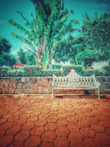 Logancentauro en Hamelin: Paisaje  (Centro), Una tarde en el Jardín  #jardines #parque #parques #paisaje #paisaje20 #paisaje2020