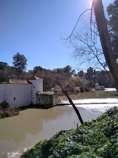 Msdh1981 en Hamelin: Paisaje  (Alcalá de Guadaíra), Río Guadaíra. Parque Oromana.  Alcalá de Guadaíra, Sevilla.  #río #molino #Parque #AlcaláDeGuadaíra