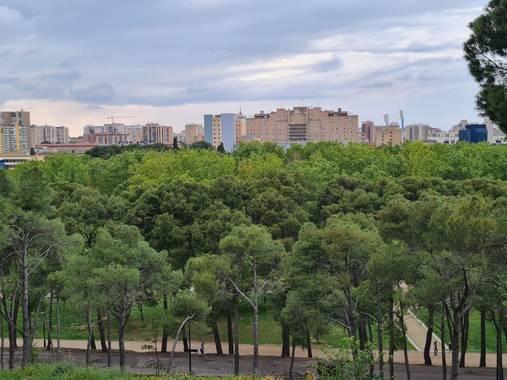 Liliannetnavas en Hamelin: Paisaje  (Zaragoza), 🙌