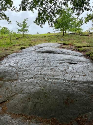 Luzbesi en Hamelin: Paisaje  (Campo Lameiro), #paisajegallego
