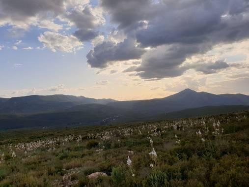 S.- en Hamelin: Paisaje  (Quero), El #paisaje #arrebatador  #LaSierra #HermosaComoEllaSola  #ASusPies #UnMar de #gamoncillos  #Y en #ElCielo #MisAmadas #Nu...