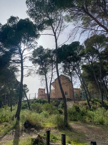 carogv1995 en Hamelin: Paisaje  (Alhama de Murcia), #sierraespuñaviva #sanatorio #naturaleza #flora21