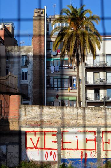 Azulmarino  en Hamelin: Paisaje  (Barcelona), Acorralada #palmera #mediterraneo #edificaciones