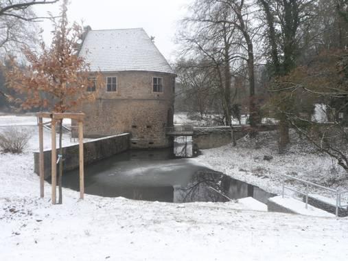 Yob93 en Hamelin: Paisaje, #Rombergpark #nieve #Alemania #Dortmund