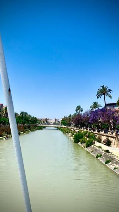 carogv1995 en Hamelin: Paisaje  (Murcia), #murciaquehermosaeres