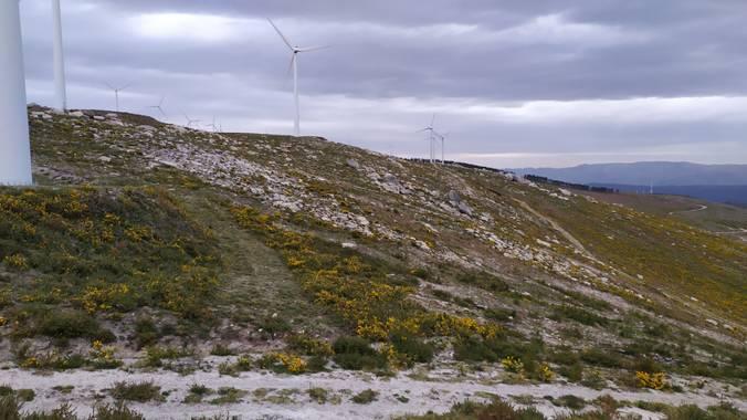 David en Hamelin: Paisaje  (A Cañiza), #paisaje #naturaleza #Galicia #España #Europa #camino