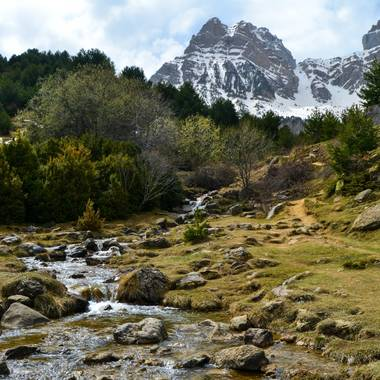 Mai en Hamelin: Paisaje  (Biescas), Barranco del boj
