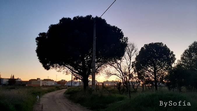 Marisofigonzalez en Hamelin: Paisaje, #atardecer