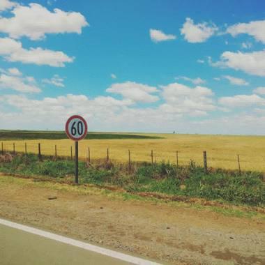 Marianaquimeycenturion en Hamelin: Paisaje  (Venado Tuerto), Caminos y trigales de mi país 🌾