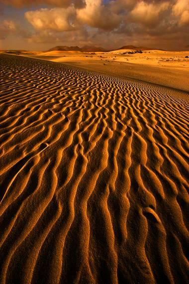 Ignicapillus en Hamelin: Paisaje  (La Oliva), Paraíso duro  Los desiertos son paraísos para el alma e infiernos para el cuerpo. Y como tenemos mucho cuerpo...