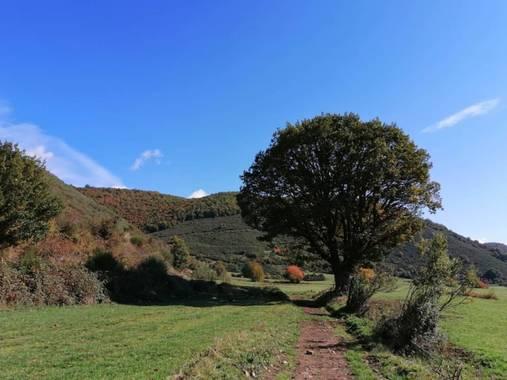 mariale en Hamelin: Paisaje, 📸 @marialemdza #otoño20 #paisajes Ruta del viernes, 09/10/2020 . #Naturaleza #Montaña #BellezaNatural #otoño2020 #ProvinciaD...