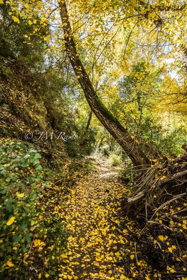 ramosbarbero.jm en Hamelin: Paisaje, #paisajesyjardines