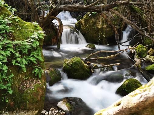 jessicajimenezramirez en Hamelin: Paisaje  (El Bosque), Rincones con encanto!! Rio majaceite ( el bosque) ❤️