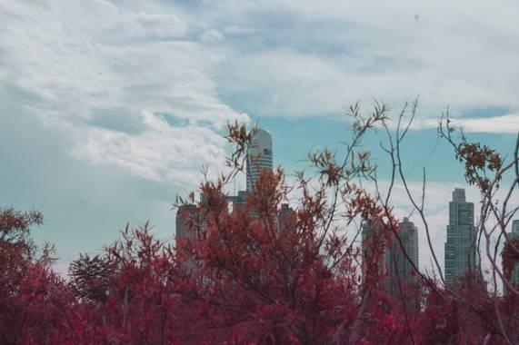 aylumeaubrio en Hamelin: Paisaje  (Ciudad de Buenos Aires), #fotocolor #fotopaisajes #fotoargentina