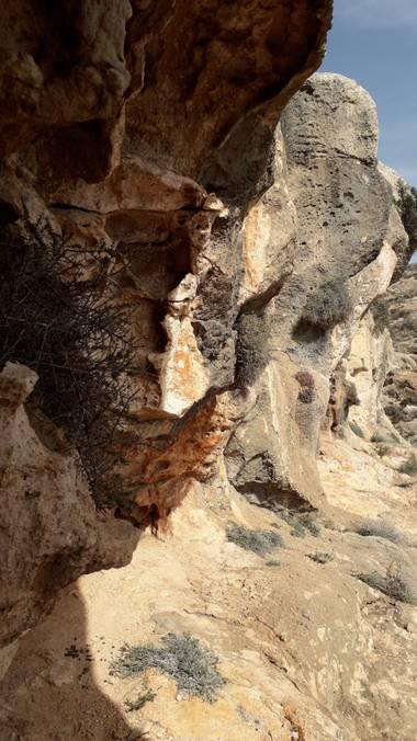 Solerantonio2 en Hamelin: Paisaje  (Almería), Cuevas medias en lacima