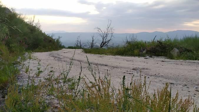 David en Hamelin: Paisaje  (As Neves), #Soledad #Verde #Green #Paisaje #Landscape #Natureza #Naturaleza #Nature #Pontevedra #Galicia #Galiza #España #Spain...