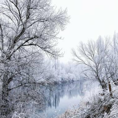 Conchivh en Hamelin: Paisaje  (Valladolid), #invierno20#pisuergavalladolid