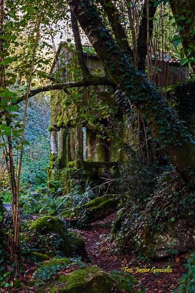 Fco. Javier González en Hamelin: Paisaje  (Vigo), Molino de Maquias  Zamans - Vigo (Galicia)  #paisaje #naturaleza #galicia #otoño20