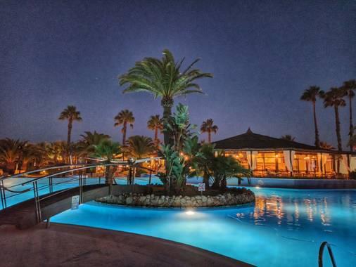 Luisinhorf en Hamelin: Flora  (Isla Cristina), Palmera iluminada en la noche rodeada de la piscina .