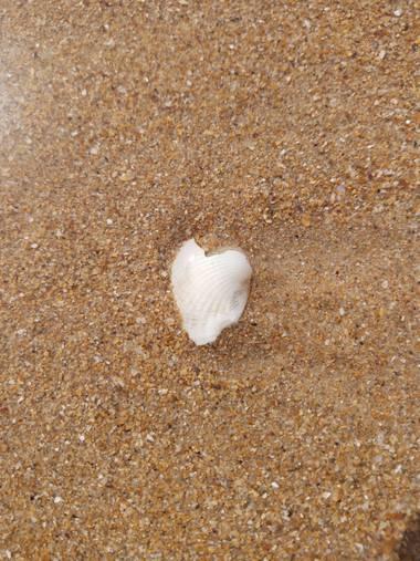Alquimia Natural en Hamelin: Paisaje  (Ribamontán al Mar), Corazoneando en la playa 💕