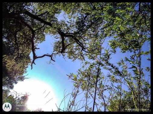 alincithask8.hdezglez en Hamelin: Paisaje, #fotocelular #paisajes   #tlaxcalitalabella  #tlaxcalitalabella    #sol