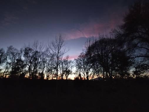 Vealor en Hamelin: Paisaje  (Vilamalla), #paisaje